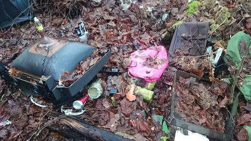 Veci televizori, dāmu somiņas un citi gruži dīvainā kārtā aizceļojuši uz mežu.