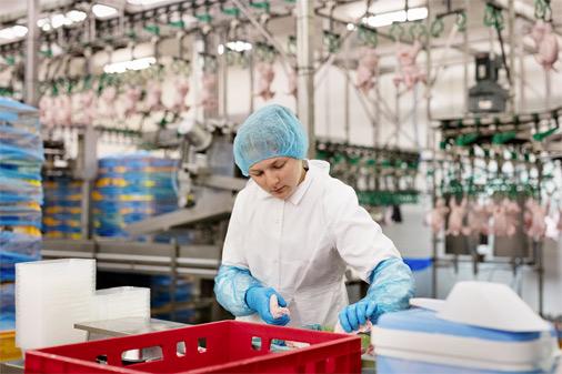 """""""Putnu fabrikā Ķekava"""" strādnieki nopelna vidēji 600 eiro uz rokas, bet tik un tā darbinieku trūkst"""