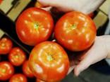 ZM: importēto dārzeņu vērtība trīs reizes pārsniedz eksporta vērtību