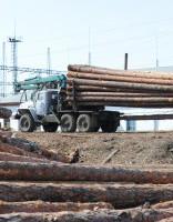 Igaunijas investori pieļauj miljardu eiro vērto celulozes rūpnīcu celt Latvijā