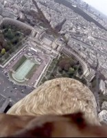 Ar videokameru aprīkots ērglis iemūžina Parīzi no augšas