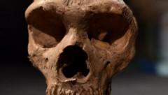 Pirmoreiz iegūts DNS no Āfrikā atrastām sena cilvēka atliekām