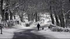 Alūksnē zemi klāj septiņi centimetri sniega