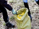 Lielās talkas pirmo stundu laikā no Rīgas izvestas 45 tonnas atkritumu