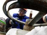 Krievijas tiesa nacionalizē «Bashneft» akcijas