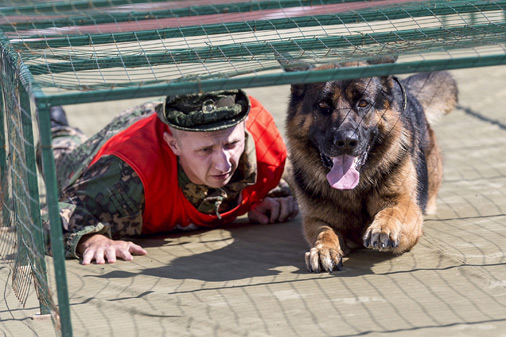 Dienesta suņu apmācība Krievijā