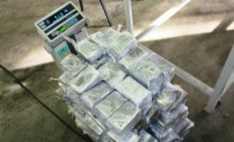 Tiesa atbrīvo vienīgo no daudzus miljonu eiro vērtā hašiša kontrabandas lietā atrastajiem