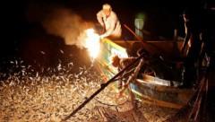 Kā viltīgie taivānieši zvejai izmanto degošus bambusa mietus