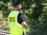Nacistu «zelta vilciena» mednieki pārtrauc izrakumus