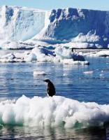 Eksperti brīdina: no Antarktīdas drīz varētu atšķelties gigantisks ledājs