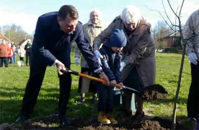 Valsts prezidents iestāda pirmo Latvijas valsts simtgades ozolu