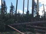 Vētras postījumi Siguldā