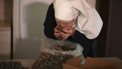 Монашки в Калифорнии, которые курят марихуану