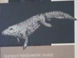 Polija pārrakstīs dinozauru vēsturi?