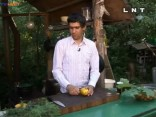 Sirmā ēdienkaratē 2011.06.19