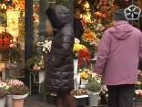 Места на цветочном базарчике пустят с молотка