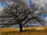 LNT laika ziņas 2012.04.19