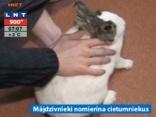 Francijā cietumniekiem atļauj turēt mājdzīvniekus