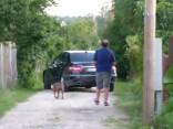 Ivara Bičkoviča suns izbauda darba auto ērtības