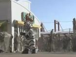 Сотрудники зоопарка Токио провели ежегодные учения