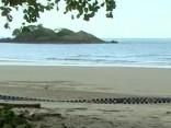 Sieviete Austrālijas pludmalē nespēj izglābt draudzeni no krokodila zobiem