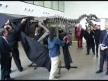 Короткие лапки тираннозавров оказались модным трендом мезозоя