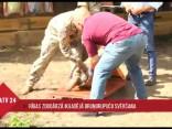 Ikgadējā bruņurupuču svēršana Rīgas zoodārzā
