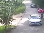 В сафари-парке Badaling Wildlife в Пекине тигр напал на женщину