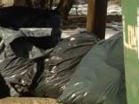 Rīgā veidos atkritumu izvešanas monopolu