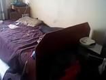Cпасение беременной кошки, брошенной умирать от голода в рижской квартире
