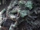 Brazīlijā atrasts 1.3 metrus augsts un 360 kilogramu smags smaragds