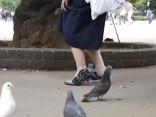 Японка создала туфли в виде голубей