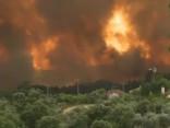 Mežu ugunsgrēkā Portugālē bojāgājušo skaits pieaudzis līdz 43