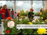 Rožu izstāde Rozes pilsētā, Rēzeknē