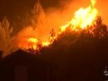 Portugālē turpinās savvaļas ugunsgrēku dzēšana