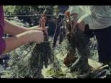 «Līgo mežā»: cepeškrāsns zem zemes un stirnas pleci priežu zaros