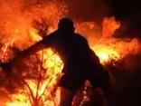 Spānijā meža ugunsgrēka dēļ evakuē 1850 cilvēkus
