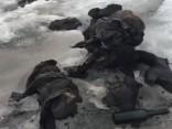 Šveices ledājā atrod 1942.gadā pazudušu pāri
