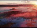Brīnumskaistā Latvija: Cenas tīreļa purvs no putna lidojuma