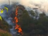 Ziemeļos no Losandželosas plosās lielākais ugunsgrēks pilsētas vēsturē