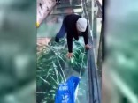 Ķīnā zem gida kājām «plīst» stikla tiltiņš