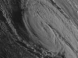 Vētra «Ofēlija»: Īrijā sieviete zaudējusi dzīvību, kokam uzgāžoties uz auto