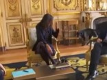 Собака Макрона опозорила его на встрече в Елисейском дворце