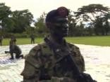 Новый рекорд Колумбии: конфисковано 12 тонн кокаина
