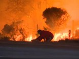 Трогательное видео: В Калифорнии мужчина вынес кролика из огня