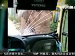 Ķīnā zilonis uzbrūk ceļmalā atstātiem braucamrīkiem