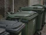 Pažobelē, atkritumu urnā vai mežā - kur pēc svētkiem likt eglīti?