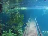 Spēcīgas lietusgāzes pārgājiena taku pārvērš skaistā zemūdens valstībā