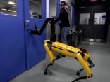 Video parāda robota spēju pielāgoties mainīgiem apstākļiem