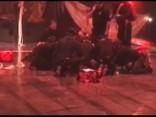 Артист Cirque du Soleil сорвался с высоты и разбился насмерть